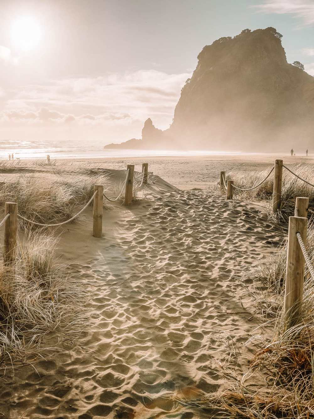 Best Beaches In New Zealand (32)