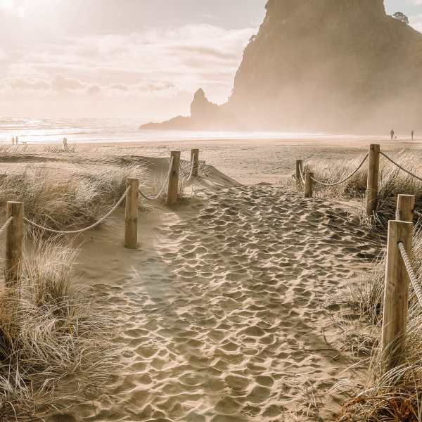 Best Beaches In New Zealand (32)