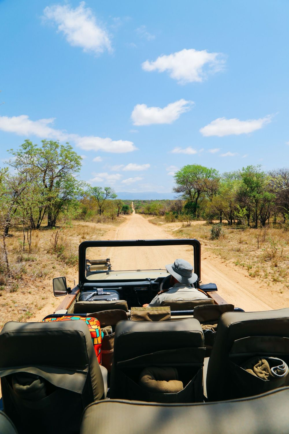 Arriving On Safari In South Africa... (Definitely Not Your Average Airport Transfer!) (16)