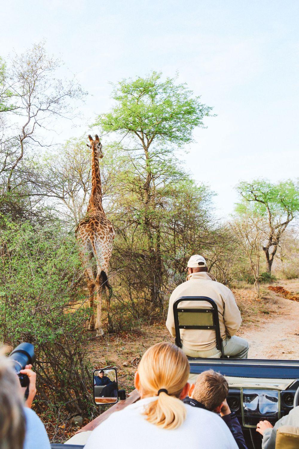 Midnight Lions, Skittish Giraffes And The Deadliest Of The Safari Big 5 In South Africa (5)