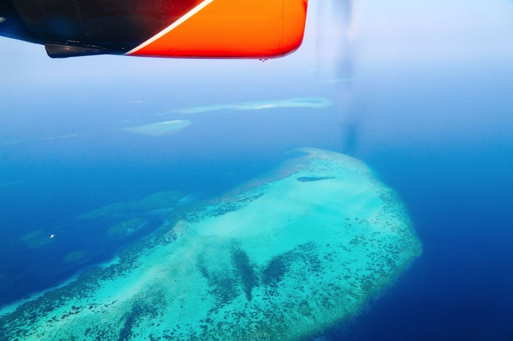 Reef Explorers In The Maldives (46)