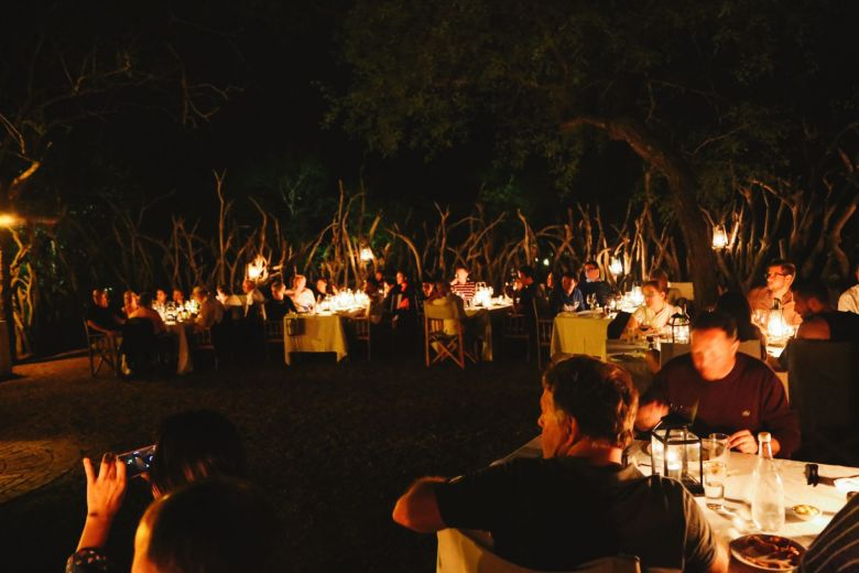 Jungle Love, South Africa (3)