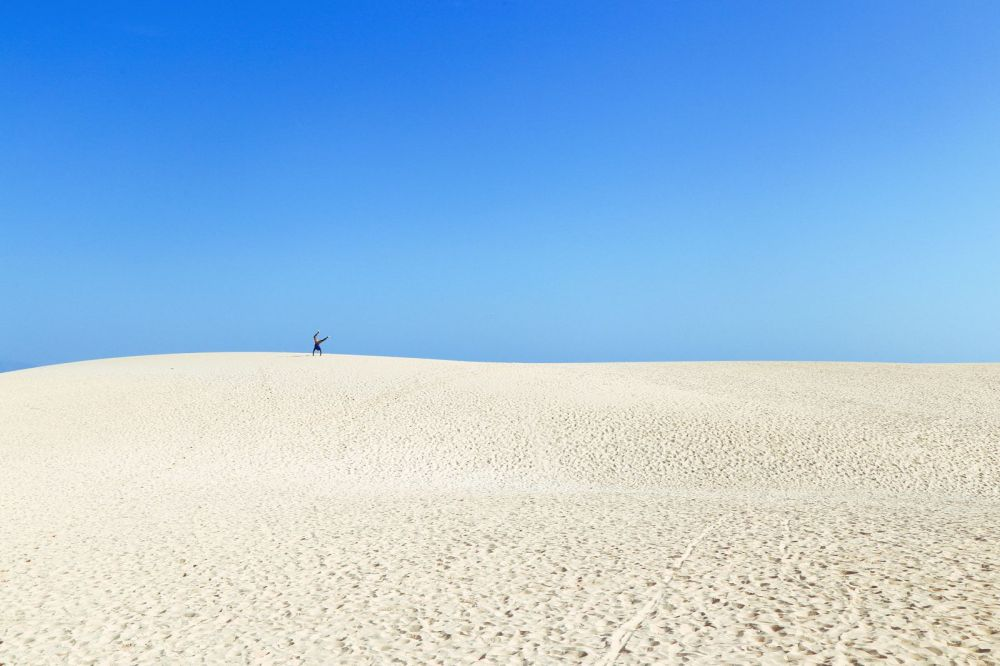 Sand-Dunes, Windmills And Cute Little Piglets In Fuerteventura, Canary Island, Spain (6)