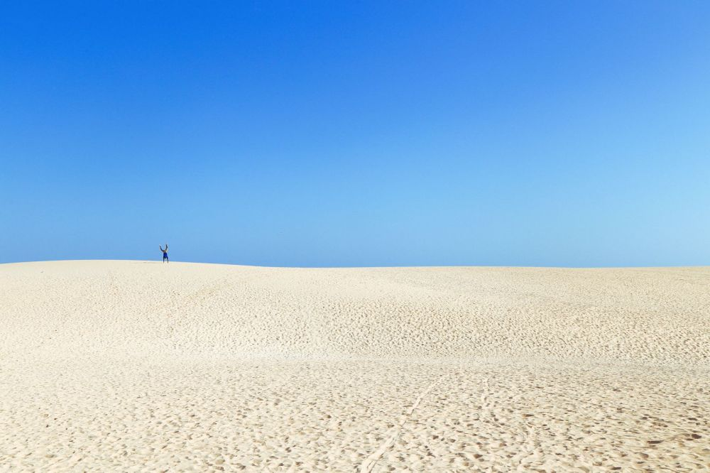 Sand-Dunes, Windmills And Cute Little Piglets In Fuerteventura, Canary Island, Spain (7)