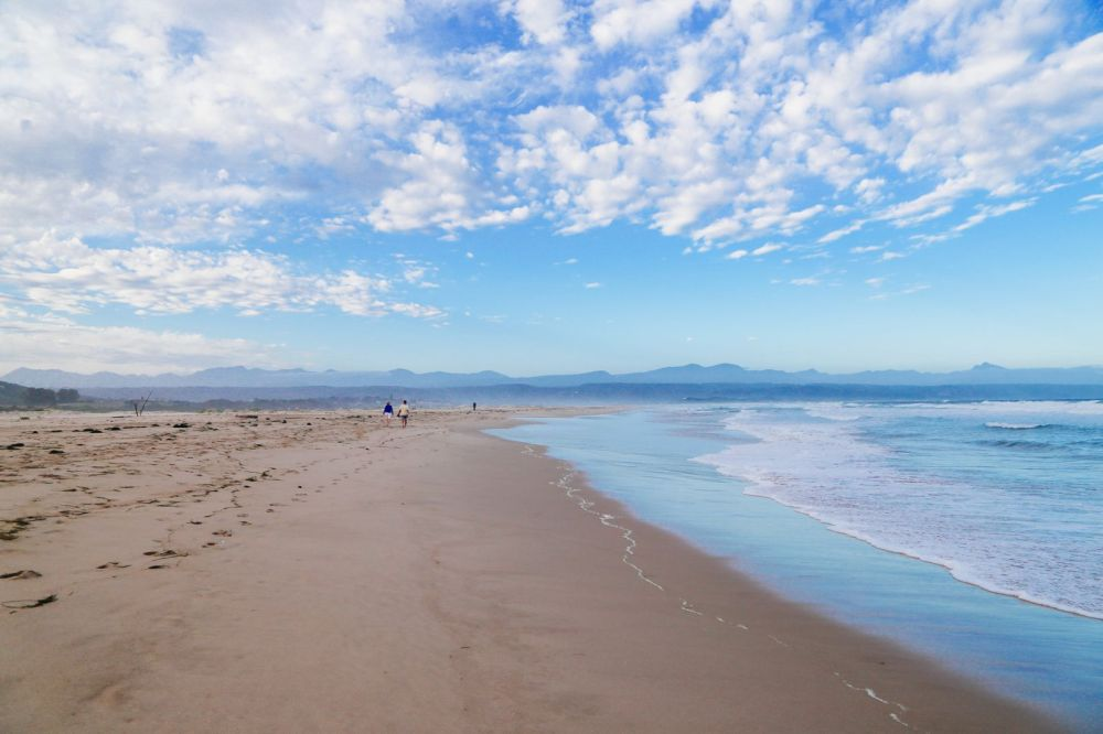 Ravines, Vineyards, Elephant Walking And The Most Spectacular Beach In South Africa's Eastern Cape (44)