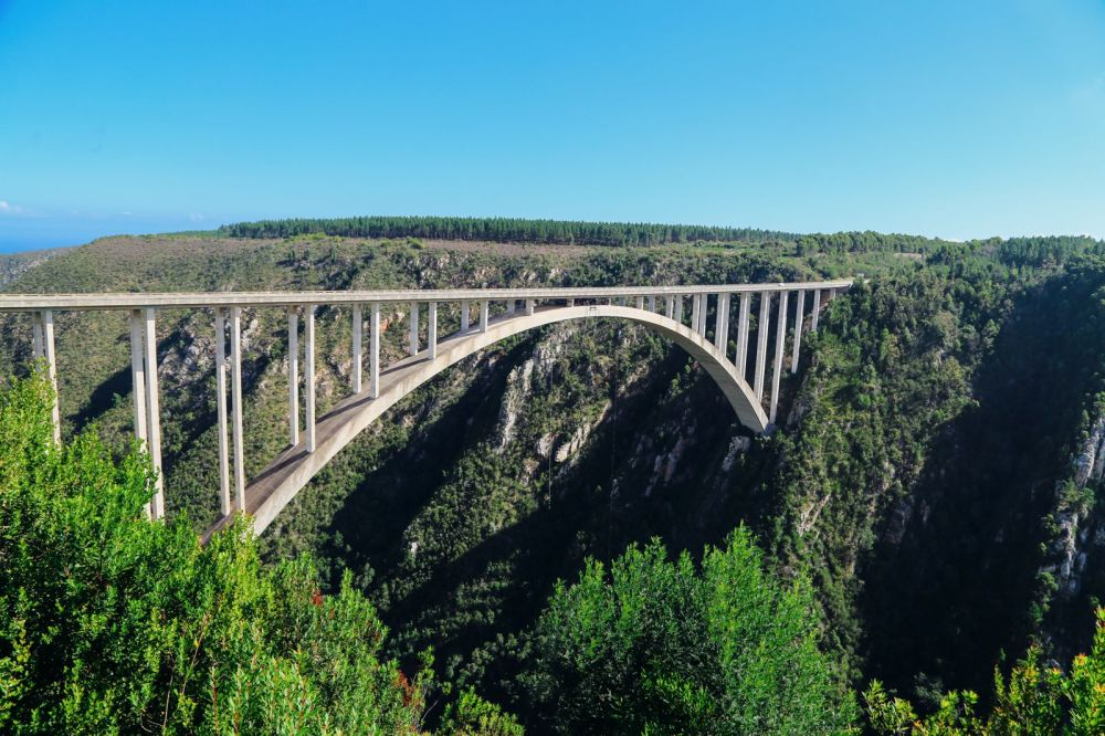 Eastern Cape Adventures In South Africa: Wines, 1,000 Year Old Trees And The Tallest Bungee In The World! (41)