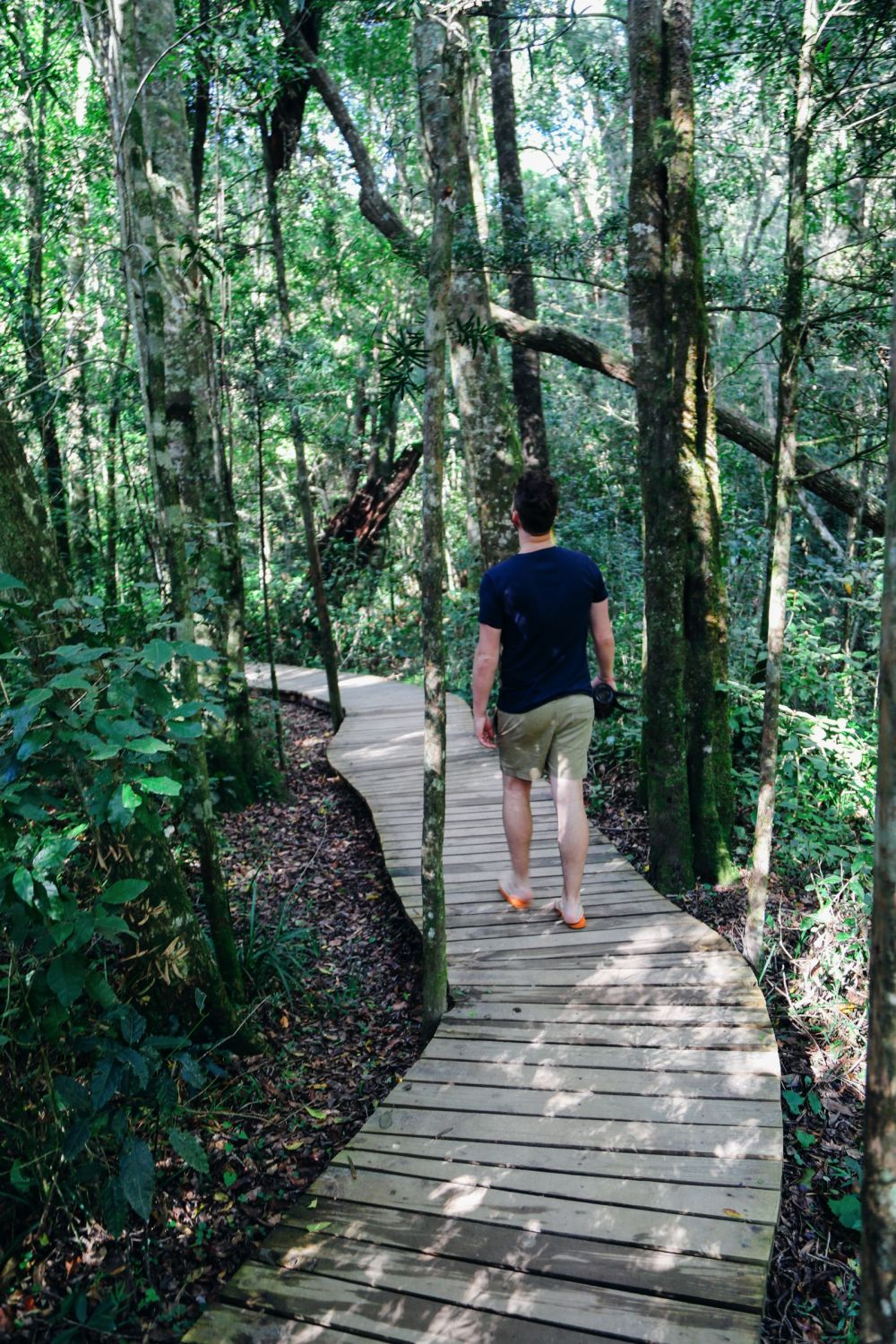 Eastern Cape Adventures In South Africa: Wines, 1,000 Year Old Trees And The Tallest Bungee In The World! (43)