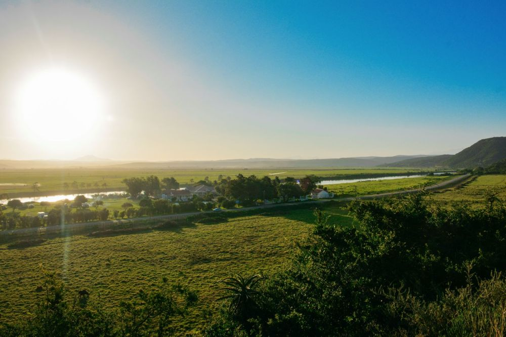 Eastern Cape Adventures In South Africa: Wines, 1,000 Year Old Trees And The Tallest Bungee In The World! (15)