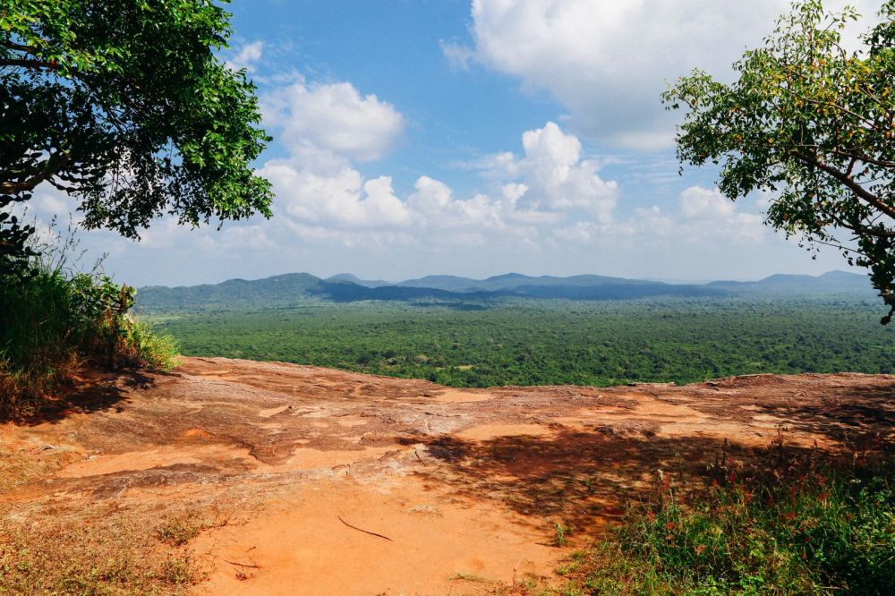 This Is One Of The Best Views In Sri Lanka - Pidurangala Rock (33)