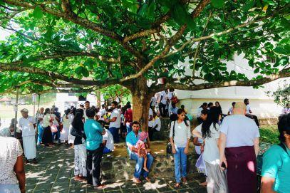 Dambulla Cave Temple And A Trip To Kandy, Sri Lanka (40)