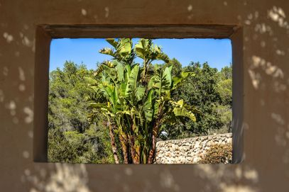This Is Your Oasis Of Calm In Ibiza - Soulshine Yoga Retreat (11)