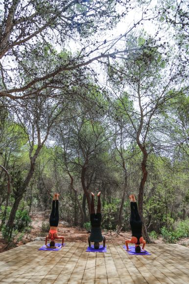 This Is Your Oasis Of Calm In Ibiza - Soulshine Yoga Retreat (42)