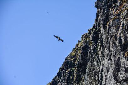 Things To See In Alesund in Norway (5)
