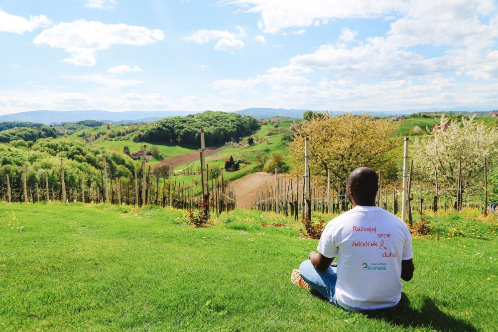 Vineyards, Charcuterie And The Old Historic City Of Maribor, Slovenia (5)