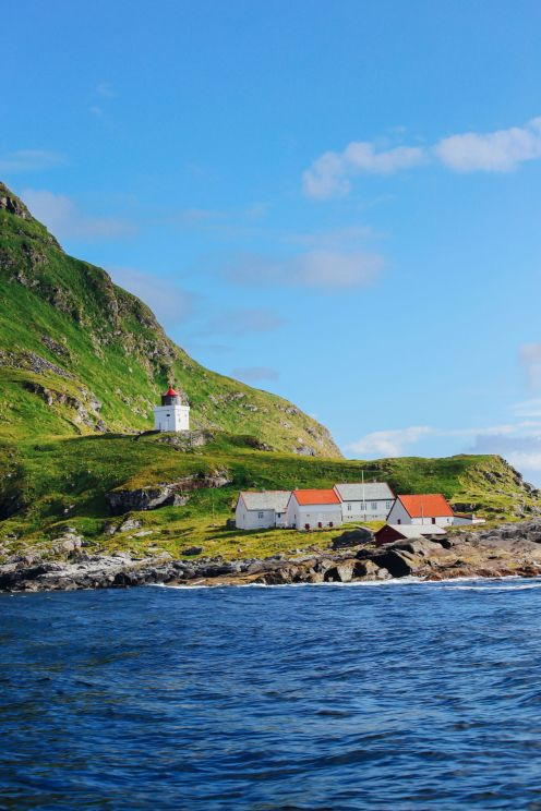 Where To Find Puffins In Norway! (18)