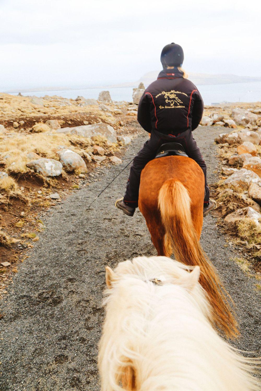 Horse Riding In The Faroe Islands... (39)