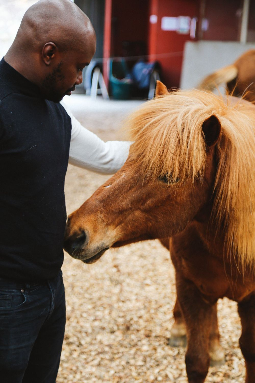 Horse Riding In The Faroe Islands... (46)