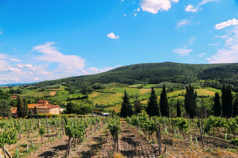 The Beautiful Italian Town Of San Gimignano (4)