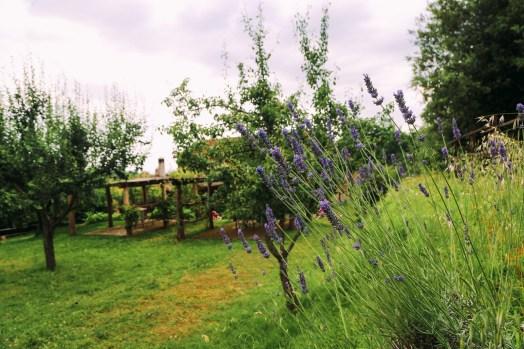 The Farmhouse... In Tuscany, Italy (30)