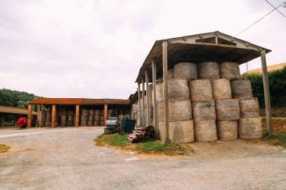 The Farmhouse... In Tuscany, Italy (51)