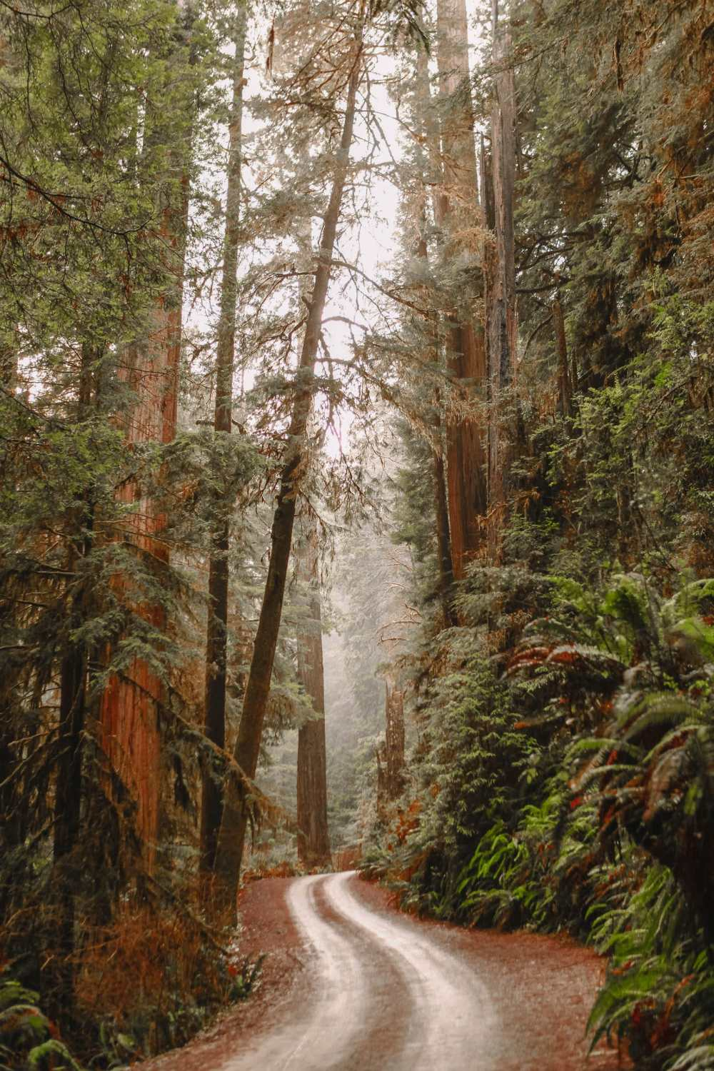 Best Hikes In California (9)