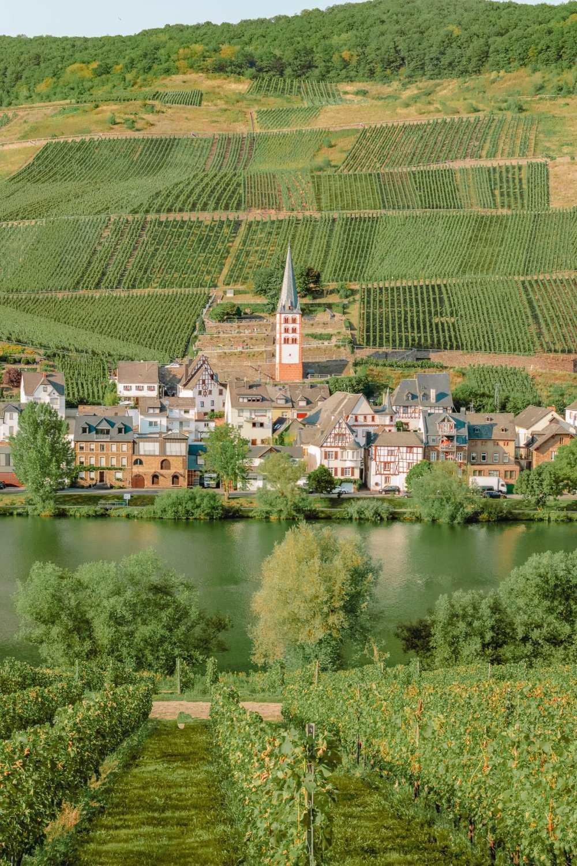 Wine Regions In Europe (29)