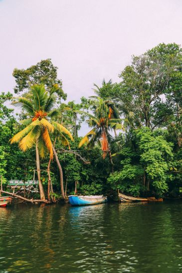 A Journey Down The Madu Ganga River, Sri Lanka (7)