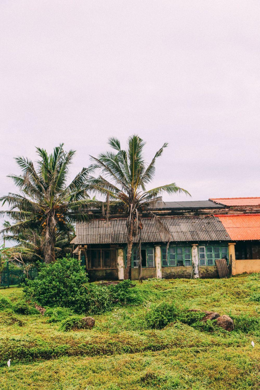 A Journey Down The Madu Ganga River, Sri Lanka (43)