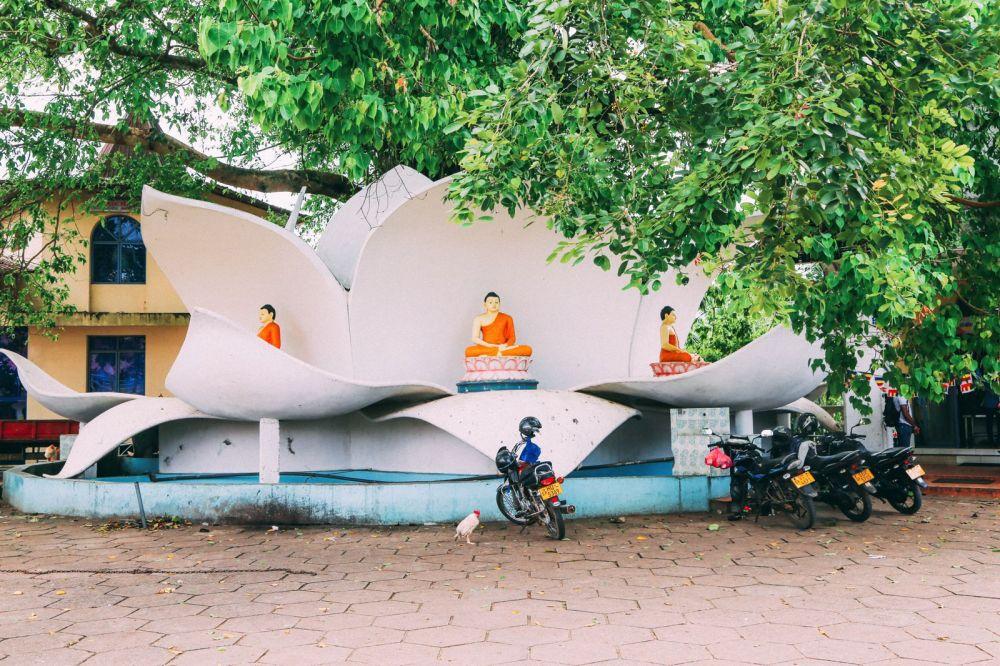 Exploring Beruwala And Bentota, Sri Lanka (20)