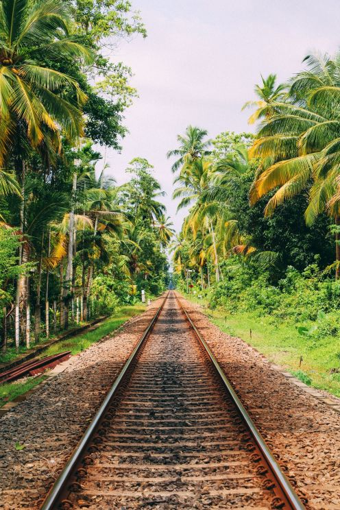 Exploring Beruwala And Bentota, Sri Lanka (29)
