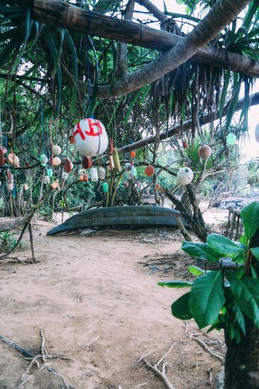 Exploring Beruwala And Bentota, Sri Lanka (52)