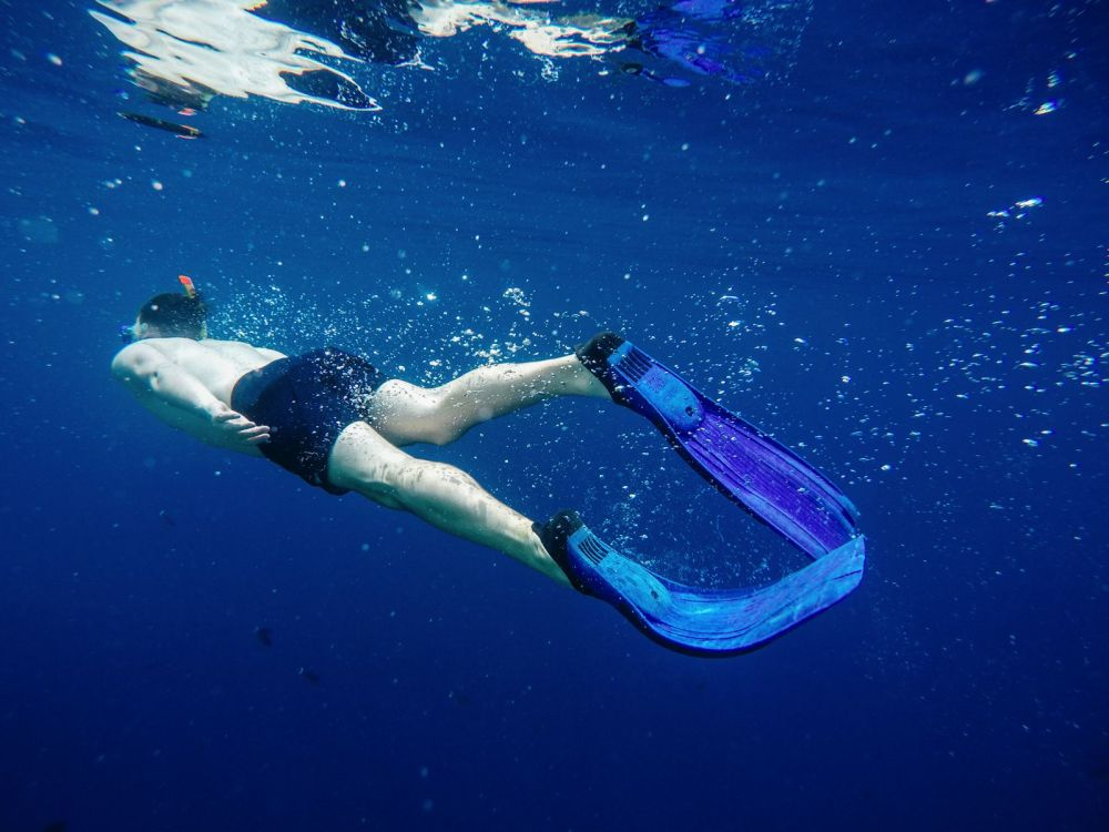 Reef Explorers... At the Angsana Velavaru Maldives (24)