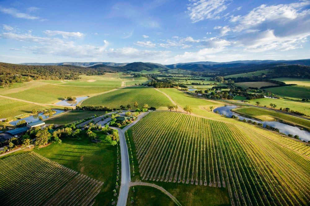 10 Incredible Vineyards You Have To Visit In Australia (10)