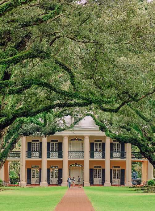 best things to do in New Orleans (13)