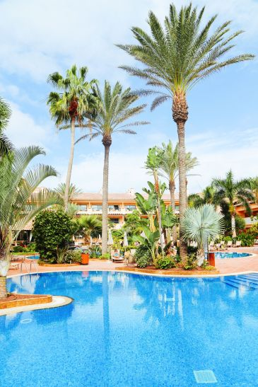 An Oasis In The Desert... In Fuerteventura, The Canary Islands (46)