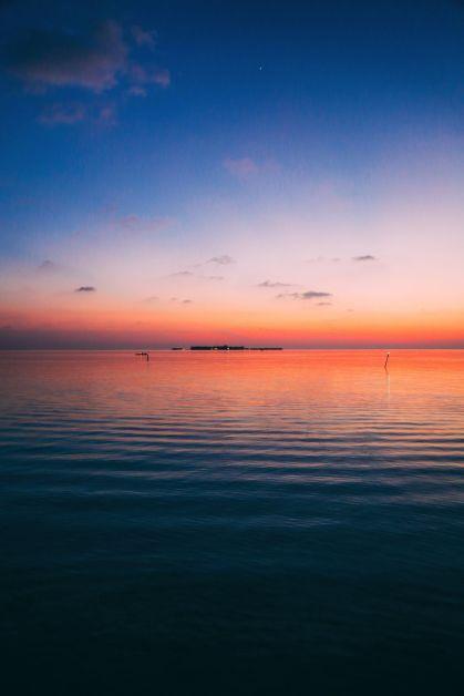 Maafushivaru, Birthing Dolphins And Swimming With Manta Rays... In The Maldives (28)
