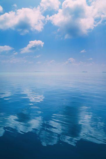 Maafushivaru, Birthing Dolphins And Swimming With Manta Rays... In The Maldives (75)