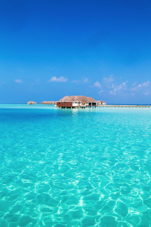 Sunshine and Island Hues... At Velassaru Maldives (9)