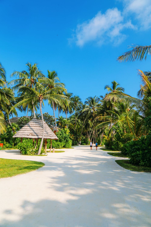 The Long Island Of Kuramathi... In The Maldives (32)