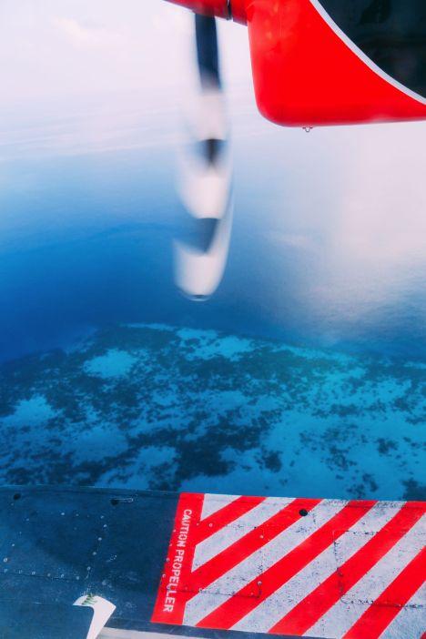 On Island Time… In Maafushivaru, Maldives (39)
