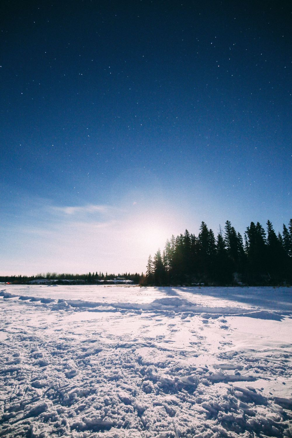 Midnight Moonlight Snowshoeing... In Edmonton, Canada (50)