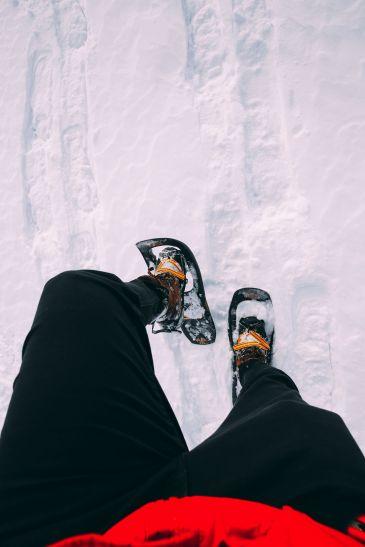 Dog Sledding In Jasper And Ice Hockey In Edmonton - 2 Canadian 'Must-Do's! (17)