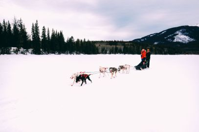 Dog Sledding In Jasper And Ice Hockey In Edmonton - 2 Canadian 'Must-Do's! (20)
