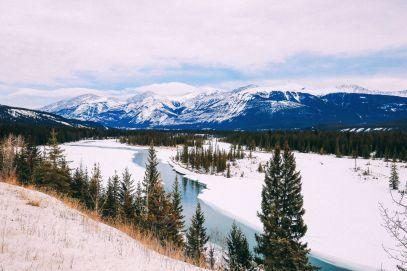 Dog Sledding In Jasper And Ice Hockey In Edmonton - 2 Canadian 'Must-Do's! (42)
