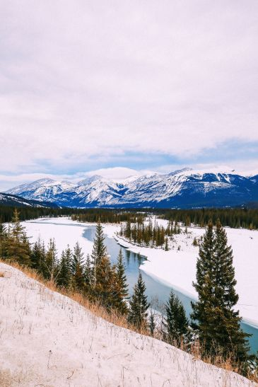 Dog Sledding In Jasper And Ice Hockey In Edmonton - 2 Canadian 'Must-Do's! (43)