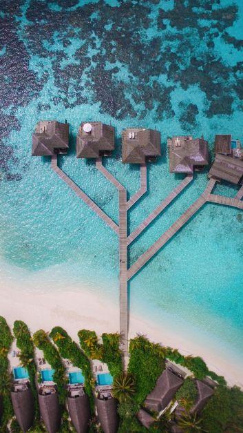 Swimming With Wild Turtles And Those Amazing Island Colours... At Kandolhu Island, Maldives (40)