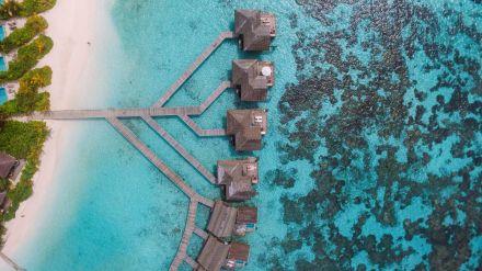 Swimming With Wild Turtles And Those Amazing Island Colours... At Kandolhu Island, Maldives (42)