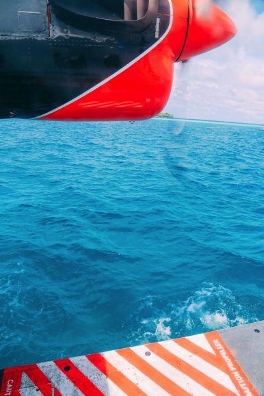 Swimming With Wild Turtles And Those Amazing Island Colours... At Kandolhu Island, Maldives (69)