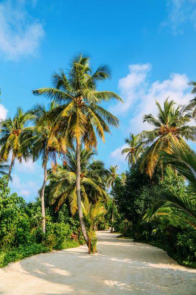 The Perfectly Lazy Day... In Kuramathi Island Maldives (51)