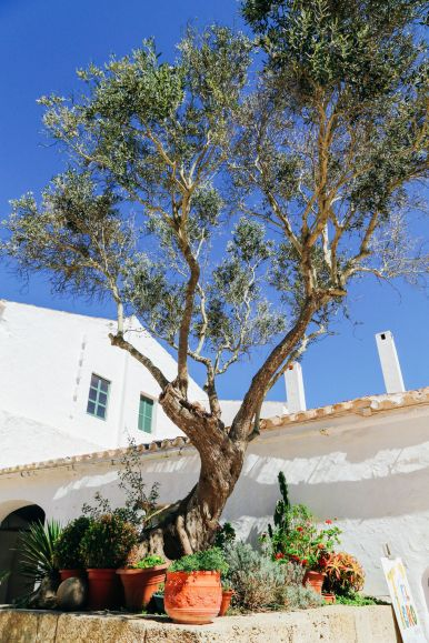 The Beautiful Spanish Town Of Ciutadella And The Secret Coves Of Menorca, Spain... (27)